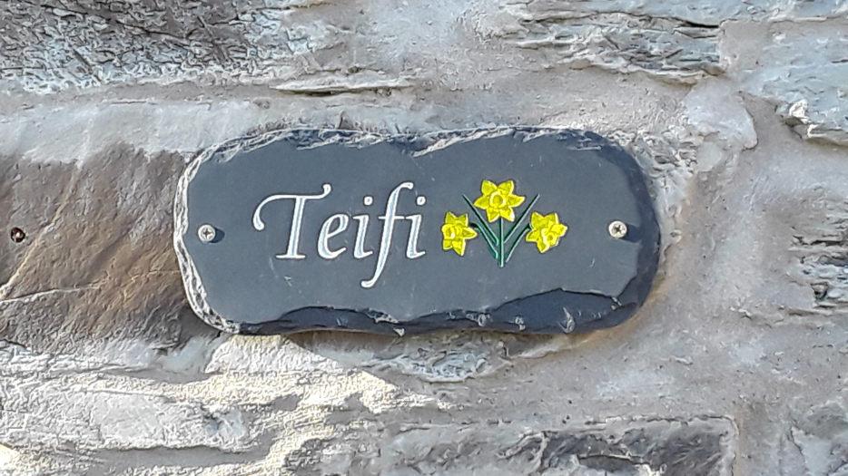 Teifi-Scroller-05